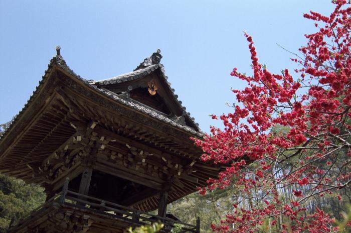安楽寺・鐘楼